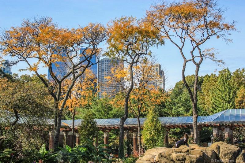 New york central park-1