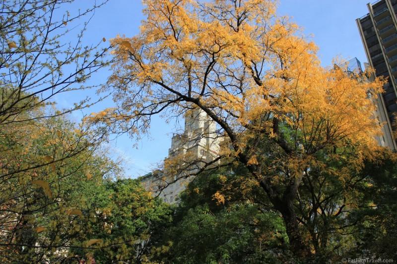 New york central park-4
